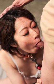 Rio Kagawa Asian in leash like a bitch takes boners in her mouth